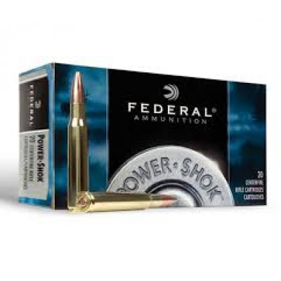 Federal .303 Power-Shok 180gr 20Pk