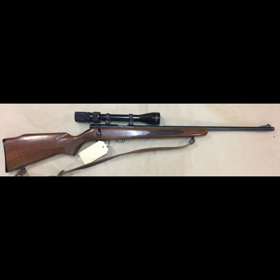 Winchester USA 320 22LR TAG BT750 NFID F0008822