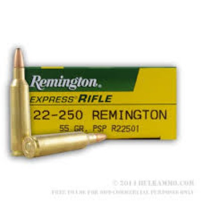 Remington .22-250 PSP 55gr 20pk